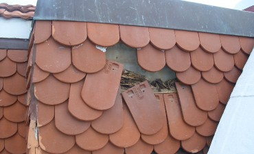 Réparer une toiture_4